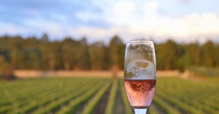 DWM - Portugal Wine Trophy Sparkling Wine Glass